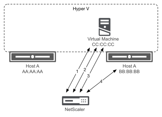 Flapping services with Hyper-V - Hyper-V virtual MAC behavior